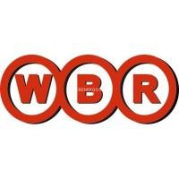 Мото аккумуляторы WBR MT12-20-B
